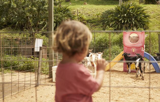 Farm Tours on Maui