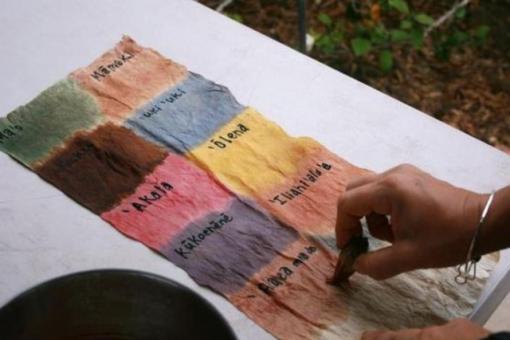 Hawaiian Dye Making at MNBG