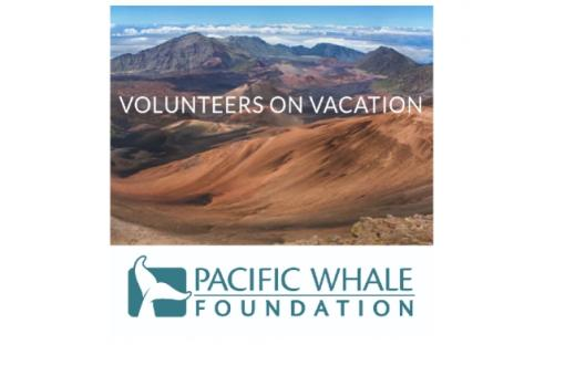 Volunteer with Hoaloha Aina & Pacific Whale Foundation