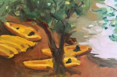 Yellow Kayaks at Heeia State Park by Suzanne Barnes