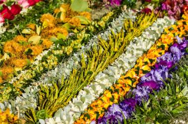 Free Lei Making Workshops - Manoa Valley District Park