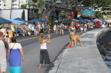Leashed dogs are welcome too!