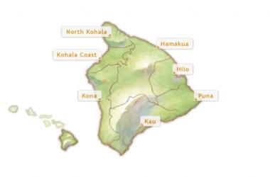 Kuhio Beach Hula Show: Ainsley Halemanu And Hula Halau Ka Liko O Ka Palai