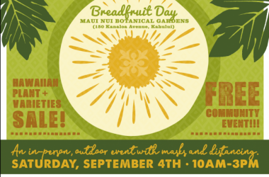 La Ulu: Breadfruit Day 2021