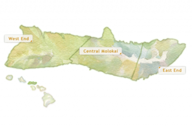Na Wahine O Ke Kai - End Of Race In Waikiki (41st Anniversary)
