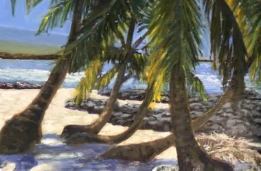 Palms - South of Puuhonua