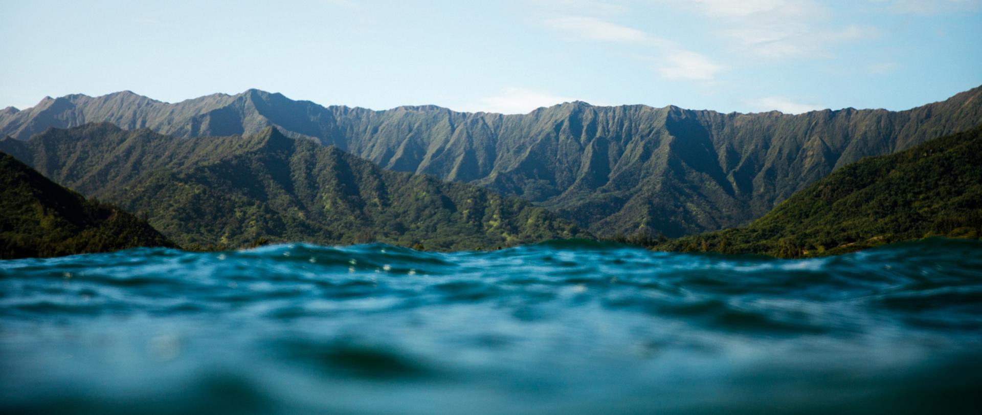 ハワイ州観光局 ハワイの旅行情報 Go Hawaii