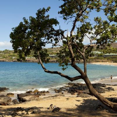 Hulopoe Bay