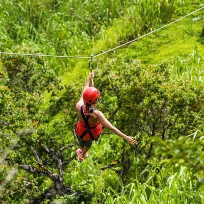 Ziplining & Rappelling
