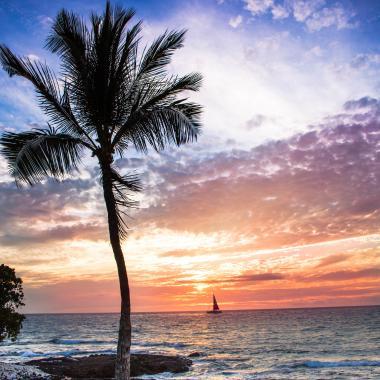 WINONA Sunset