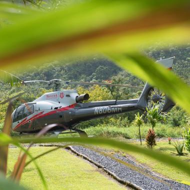 Hana Rainforest Experience