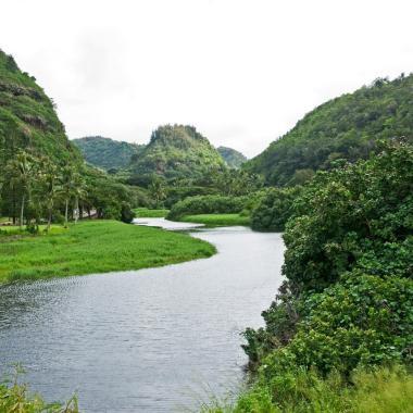 Waimea Valley 1
