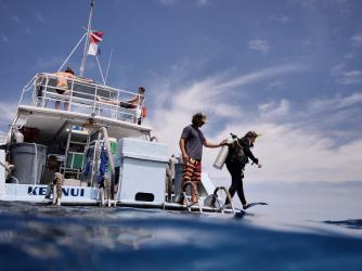 Slip into the clear waters of Kona, Hawaii from a Jack's Diving Locker boat.