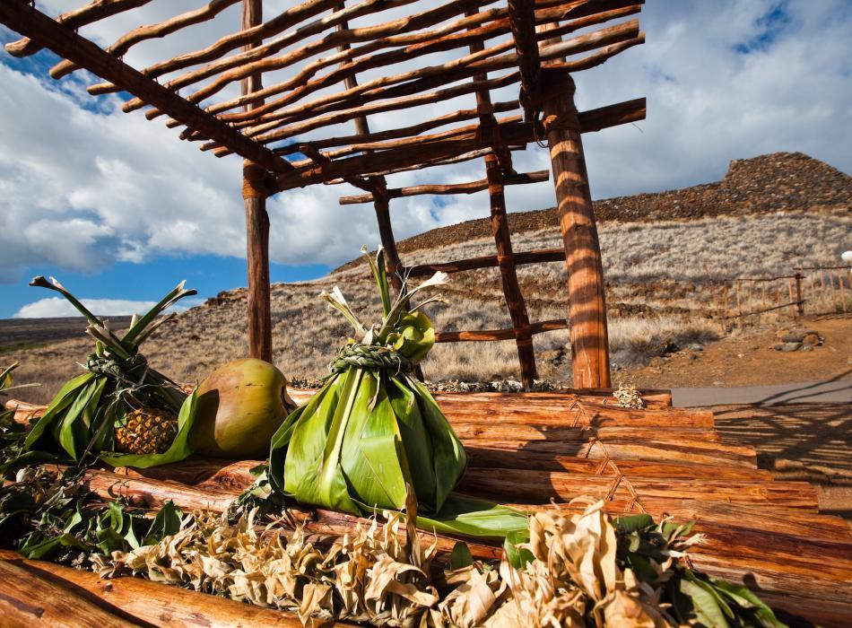 ハワイ州観光局公式ラーニングポータルサイト「アロハプログラム」