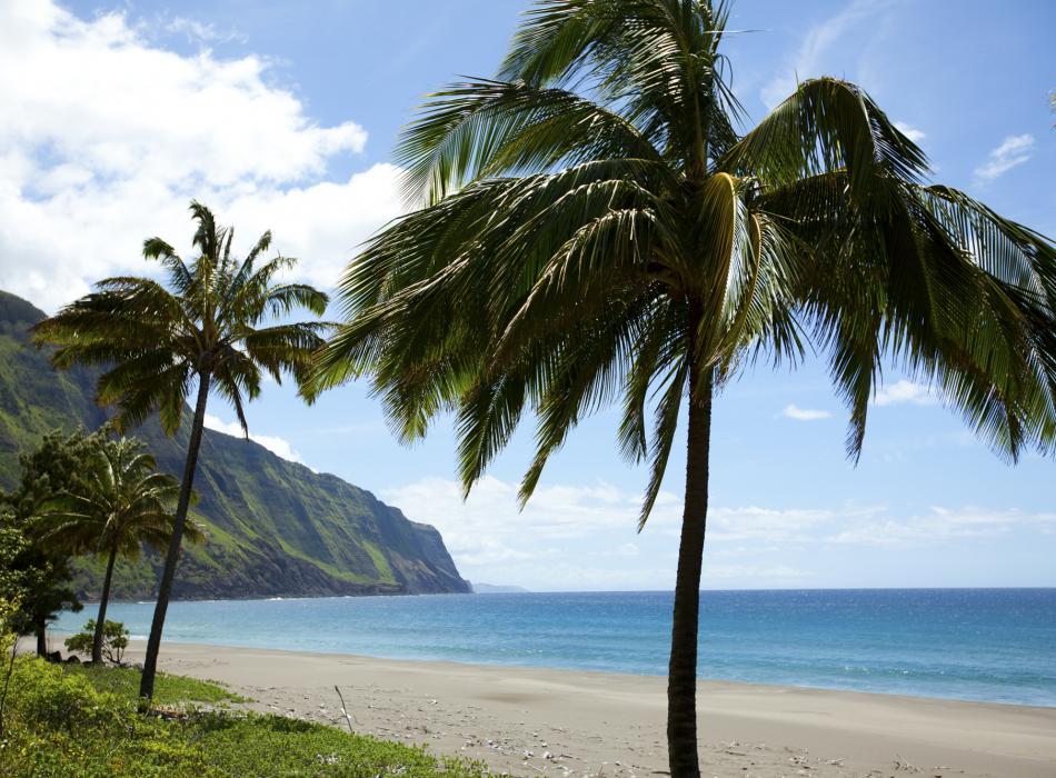 モロカイ島を楽しむ