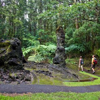 Lava Trees State Park in Puna on the island of Hawaii