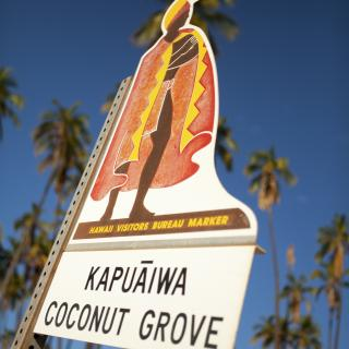 Kapuaiwa Coconut Grove