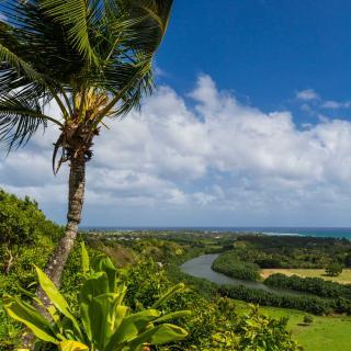 The East Side of Kauai known as the Royal Coconut Coast