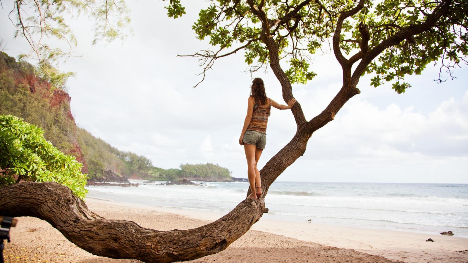 ハワイの島々や地域の気候